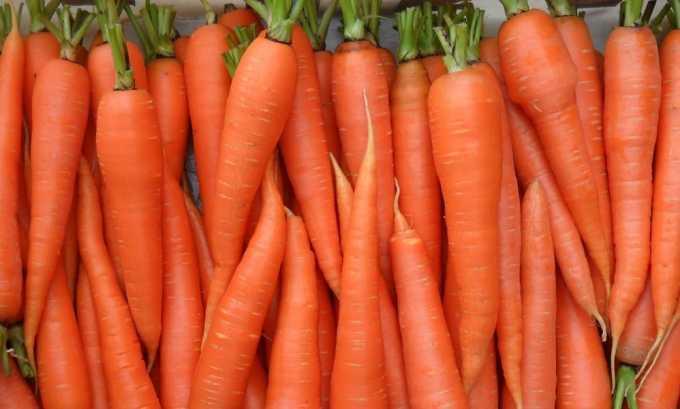 Морковные компрессы полезны при узлах щитовидной железы