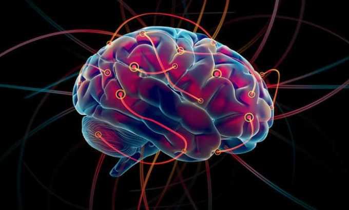Левокарнил нормализует кровообращение в сосудах головного мозга