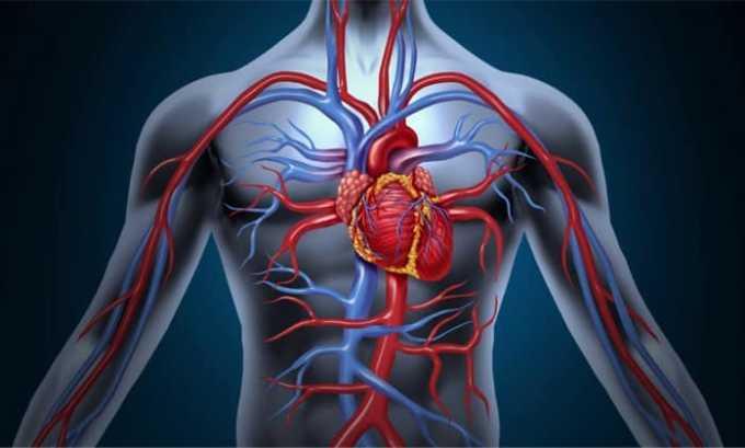 При околосуставном, внутрикожном и внутрисуставном введении соли действующих компонентов быстро растворяются и разносятся кровью по организму