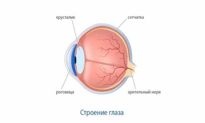 Препарат также помогает при трансплантации роговицы глаза для иммунодепрессии