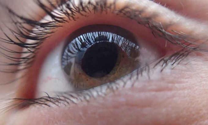 Ретинол поддерживает здоровое состояние сетчатой оболочки глаза