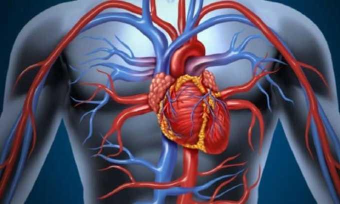 Препарат противопоказан при нарушении периферического кровообращения