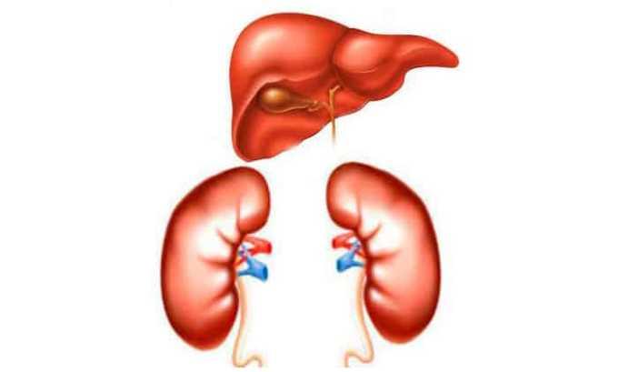 Вольтарен гель не используют при тяжелых нарушениях функций почек, печени