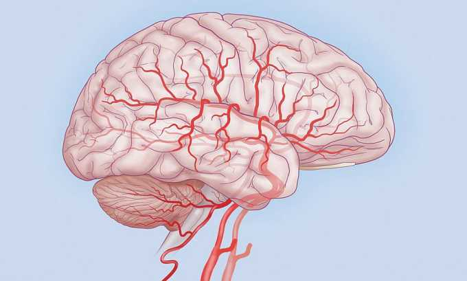 Элькар показан к применению при различных патологиях головного мозга