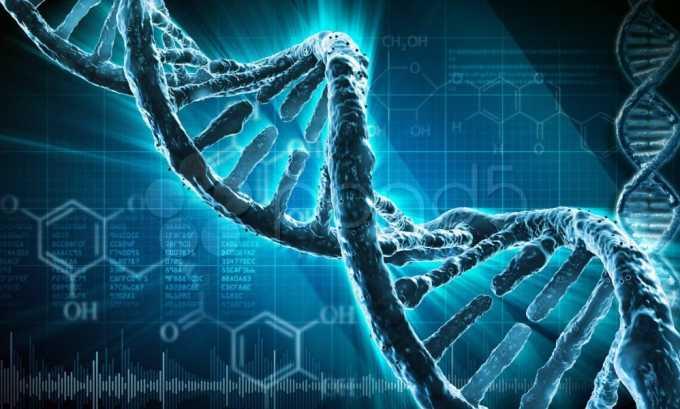Риск заболеть повышается при наличии генетической предрасположенности
