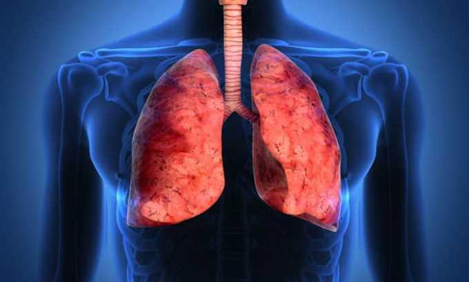 Эгилок противопоказан при хронической болезни легких