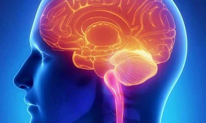 Витамин В1 способствует улучшению деятельности мозга