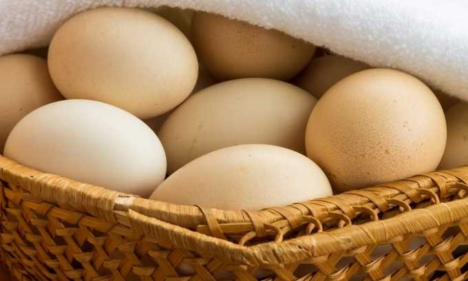 Куриные яйца являются источников витамина Е