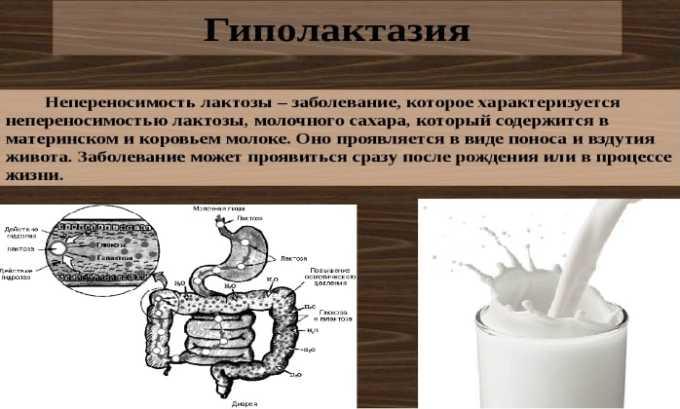 Строго запрещено назначать препарат людям с наследственной формой гиполактазии
