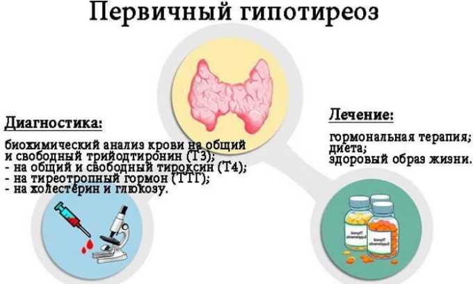 Диагностика первичного типа выполняется эндокринологом