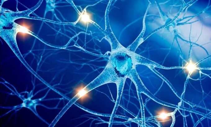 L-карнитин восстанавливает структуру нервной ткани