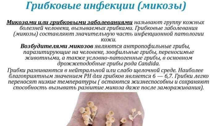 Препарат противопоказан больным грибковыми инфекциями