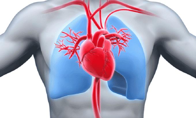В качестве симптоматики передозировки выделяют замедление желудочковой проводимости