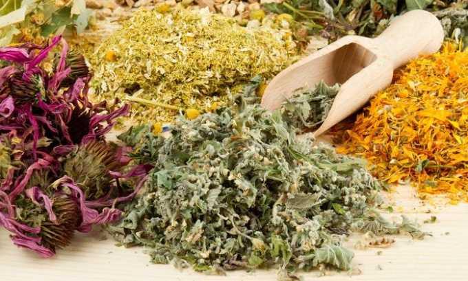 Специалисты советуют принимать лекарственные растения в сборах, а не по отдельности