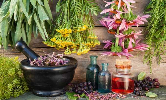 Улучшить работу щитовидной железы можно с помощью мочегонных трав