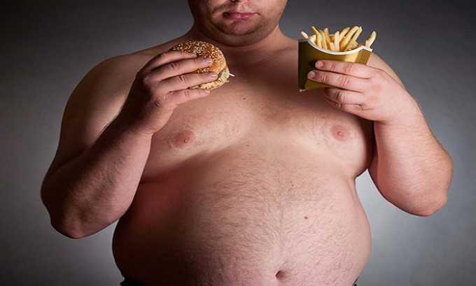 Прием Эгилока может вызвать быстрый набор веса