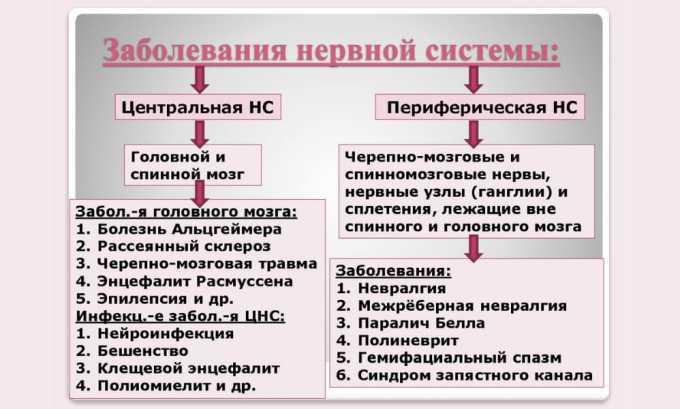 Левокарнил назначается при нарушении работы ЦНС