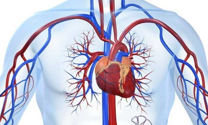 Омега-3 и витамин Е нужно принимать при сердечно-сосудистых патологиях