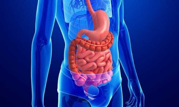 Во время приема препарата возможно нарушение пищеварения