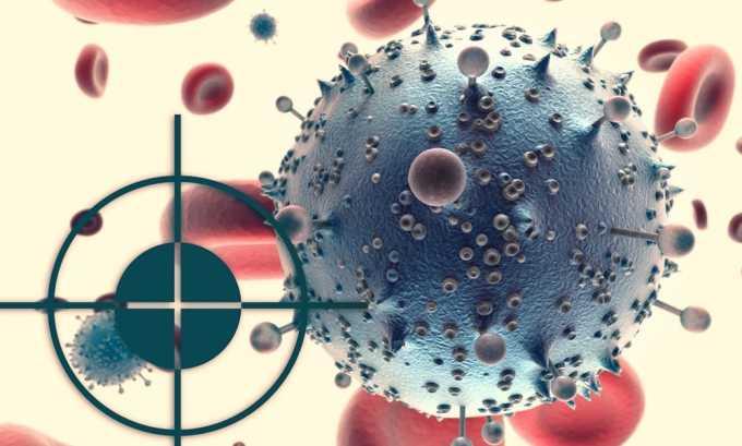 Препараты таргетной терапии блокируют развитие злокачественных клеток при раке щитовидной железы
