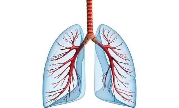 Атенолол увеличивает объем легких