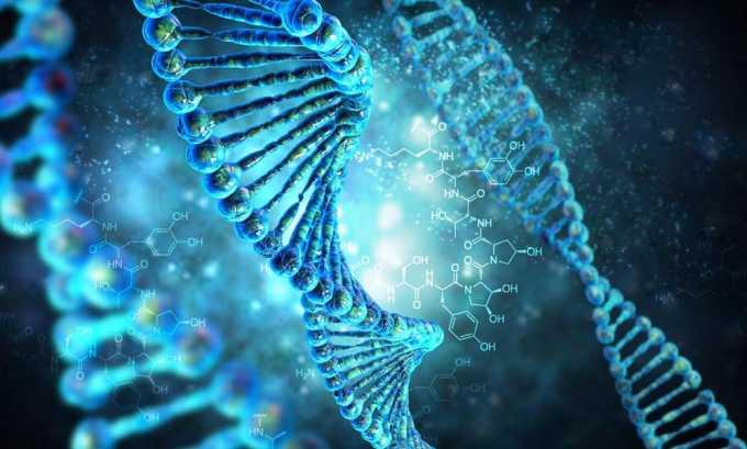 В организме человека есть ген, ответственный за развитие опухоли щитовидной железы