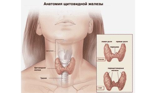 Если после операции часть железы остается, то гипотериоз развиваться не будет