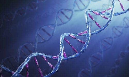 На гипотиреоз также влияние оказывает генетическая предрасположенность