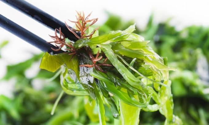 Йодосодержащие травы должен назначать врач, так как, принимая их самостоятельно, можно вызвать переизбыток йода в организме