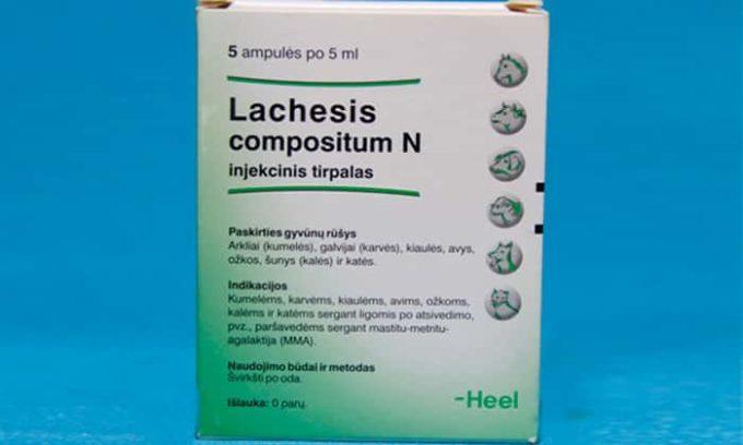 Лахезис назначается для женщин непосредственно перед месячными. У пациенток в данный период зачастую наблюдается чередование депрессивного состояния с периодическим повышением работоспособности