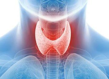 Что делать, если васкуляризация щитовидной железы повышена?