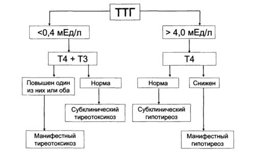Показатели ТТГ при гипотиреозе определяют нарушения функций гипофиза и щитовидной железы и являются основной характеристикой при постановке диагноза