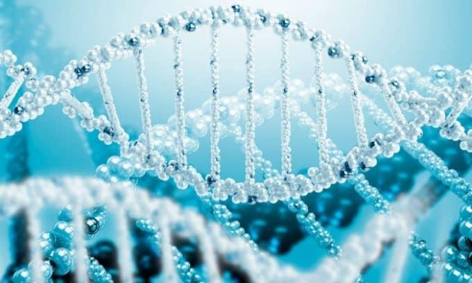 Аутоиммунный тиреоидит чаще всего обусловлен наследственной предрасположенностью