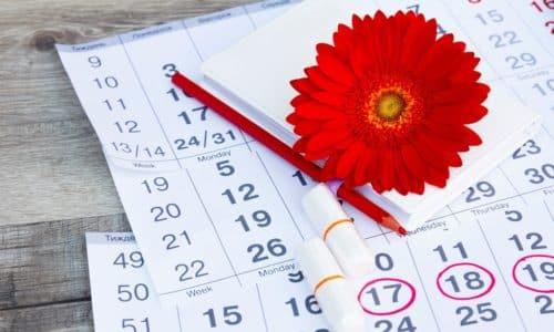 Показатели ТТГ у женщин могут меняться в зависимости от фазы менструального цикла