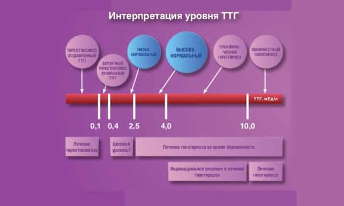 Самым важным критерием оценки является уровень тиреотропного гормона. Если данный показатель находится в пределах нормы, то железа работает нормально