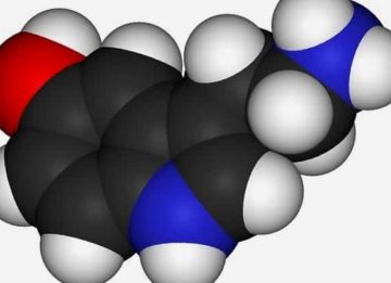 Понятие что такое тиреоглобулин и его норма