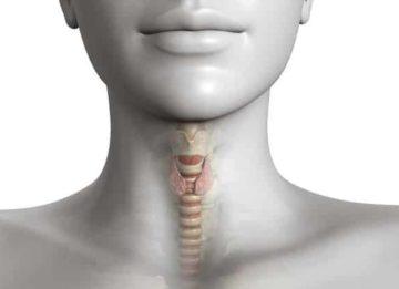 Что такое гиперплазия паращитовидной железы и как ее устранить?