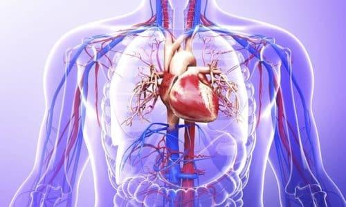 Триамцинолон потенцирует действие адреналина и норадреналина на сердечную мышцу, повышая ударный объем и артериальное давление