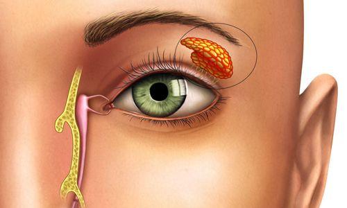 Дексаметазон борется с воспалением, вызванным механическими, химическими и иммунными агентами