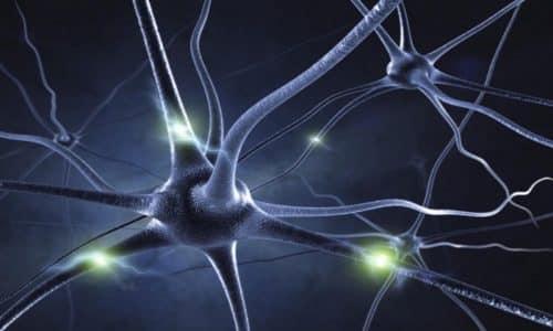 Тиамин оказывает влияние на функции нервной системы