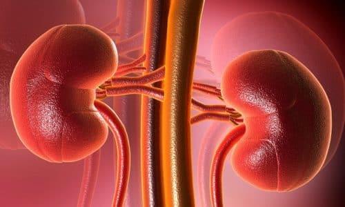 При патологии почек недопустимо повышение концентрации медикамента в организме