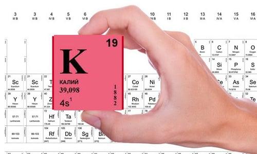Одновременное использование Дексаметазона с мочегонными средствами ускоряет выведение калия