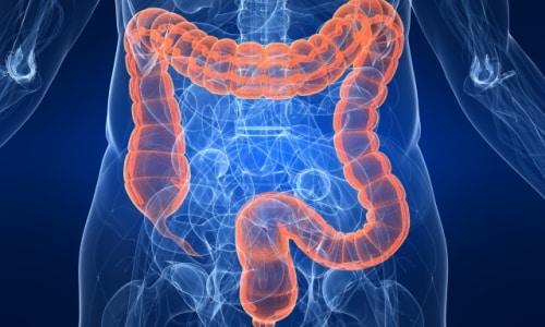 Быстро и на 100% всасывается из желудочно-кишечного тракта после перорального приема