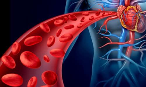 Максимальная концентрация Дексаметазона в крови достигается через 60-120 минут