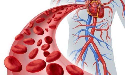 Препарат не применяют при заболеваниях кроветворной системы, сопровождающихся нарушением свертываемости крови