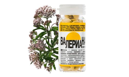 Валериана - седативное средство растительного происхождения, проверенное опытом многих поколений и давно применяемое официальной медициной