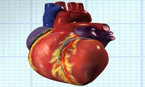 Препарат нормализует сердечный ритм после физических и эмоциональных нагрузок