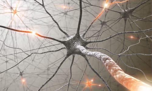 Использование средства способствует замедлению проведения нервных импульсов