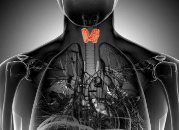 Признаки и лечение недостатка гормонов щитовидной железы
