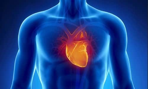 Препарат Эгилок 50 нейтрализует влияние симпатической системы на сердечную мышцу